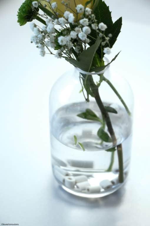 comment utiliser les Perles de céramiques aux micro-organisme pour fleurs