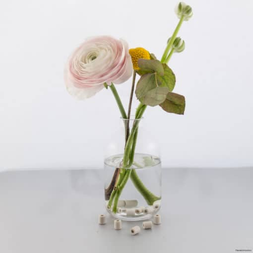 Perles de céramiques aux micro-organisme pour vases